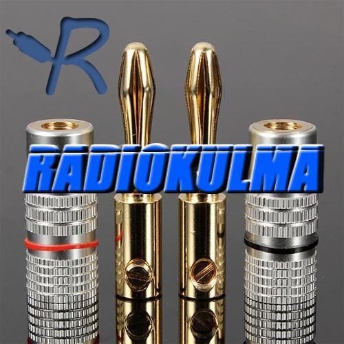 R-Audio BN-24K Ruuvattava Banaani, 4kpl-8635